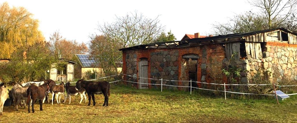 Eselwandern-Startstation