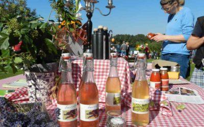 7. Regionalmarkt der Uckermark – Ausstelleranmeldung bis 19. August möglich