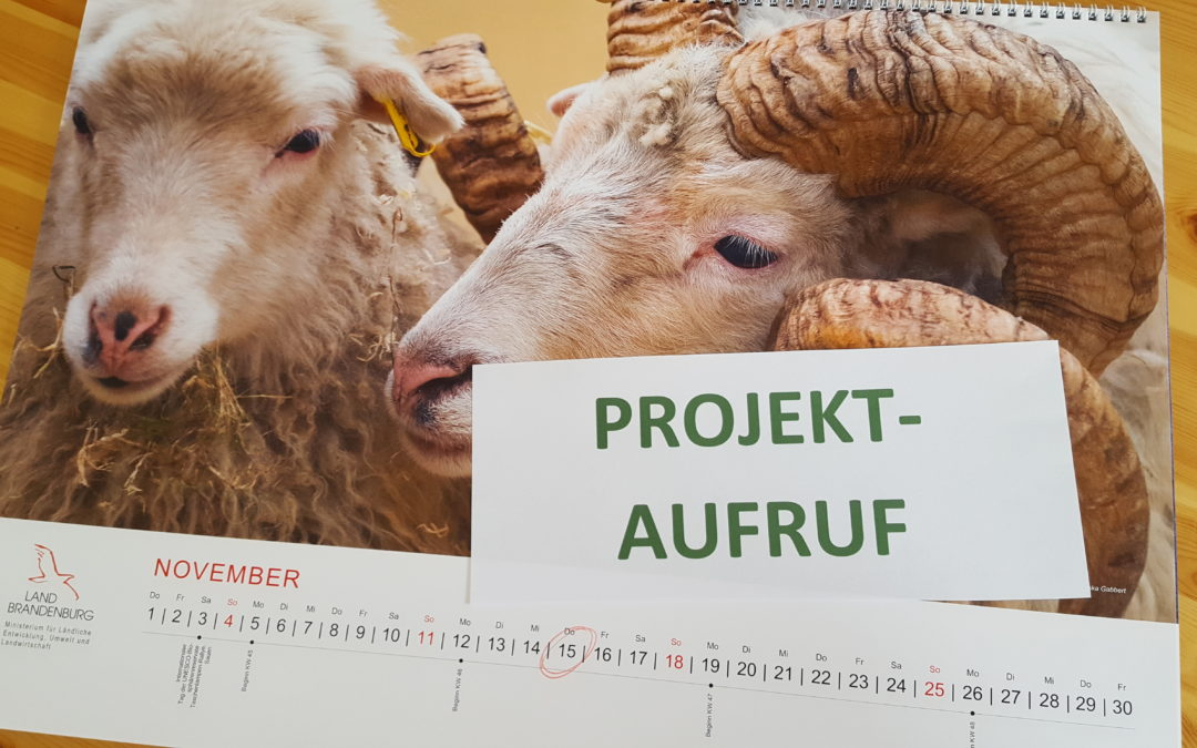 PROJEKTAUFRUF – 2. Projektauswahlverfahren 2018