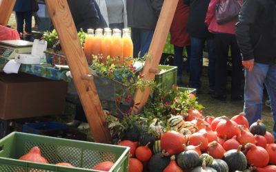 Erfolgreicher 7. Regionalmarkt der Uckermark